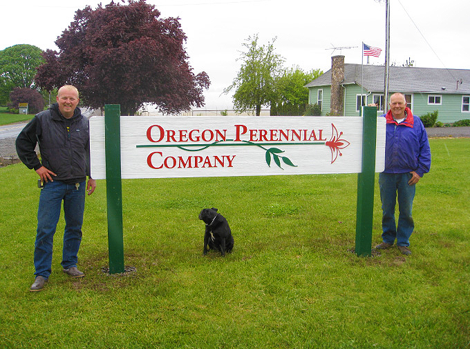 About Oregon Perennial Company